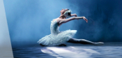 The Moscow Ballet Presents Swan Lake