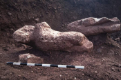 4 Ancient Greek Statues Unearthed Near The Town Of Atalanti