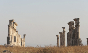 Redefining Urban Development In Hellenistic North Syria