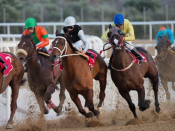Greek-Irish Society ~ Horse Racing Activities For Children