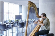 Harp Melodies At The Acropolis Museum Restaurant