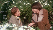 Harold And Maude - Park Your Cinema